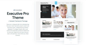Executive Pro Theme Download