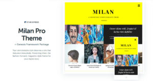 Milan Pro Theme Download