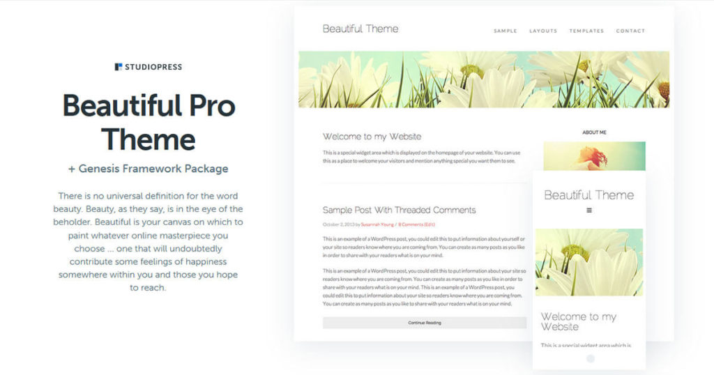 Beautiful Pro Theme Download