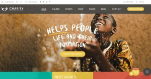 Charity Foundation - Charity Hub Fundraising Wordpress Theme Nulled-WPGenuine